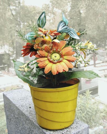 kwiaty, cmentarz, groby