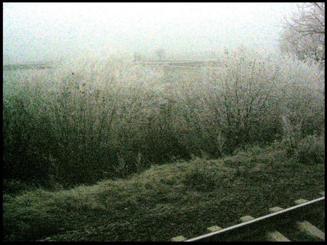 widok z pociągu